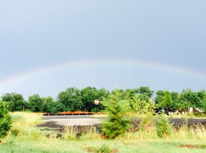 And this was my view on the way home. A sign of good things to come. Absolutely. Rainbows after the storm.